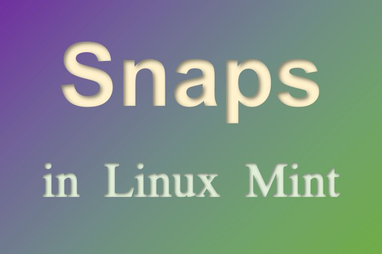 How to use Snap in Linux Mint - Real Linux User